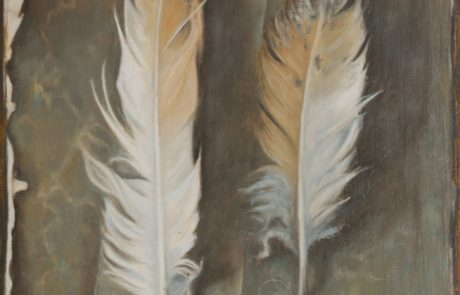 Two white feathers laid on some decorative paper